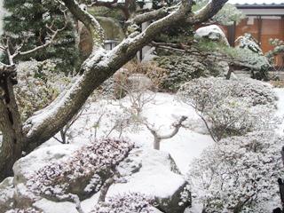 雪が降りました…