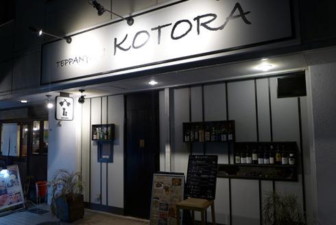 kotora-1.jpg